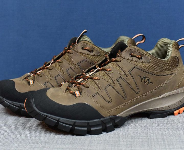 Blaser Walking Shoe